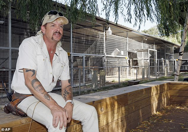 Tiger King: Joe Exotic's legal team held a meeting and plan in place as they make their final push to get President Donald Trump pardoned for star Tiger King before he leaves office according to TMZ, as seen in August 2013